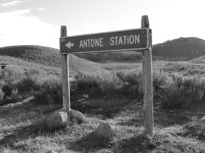 Antone Station