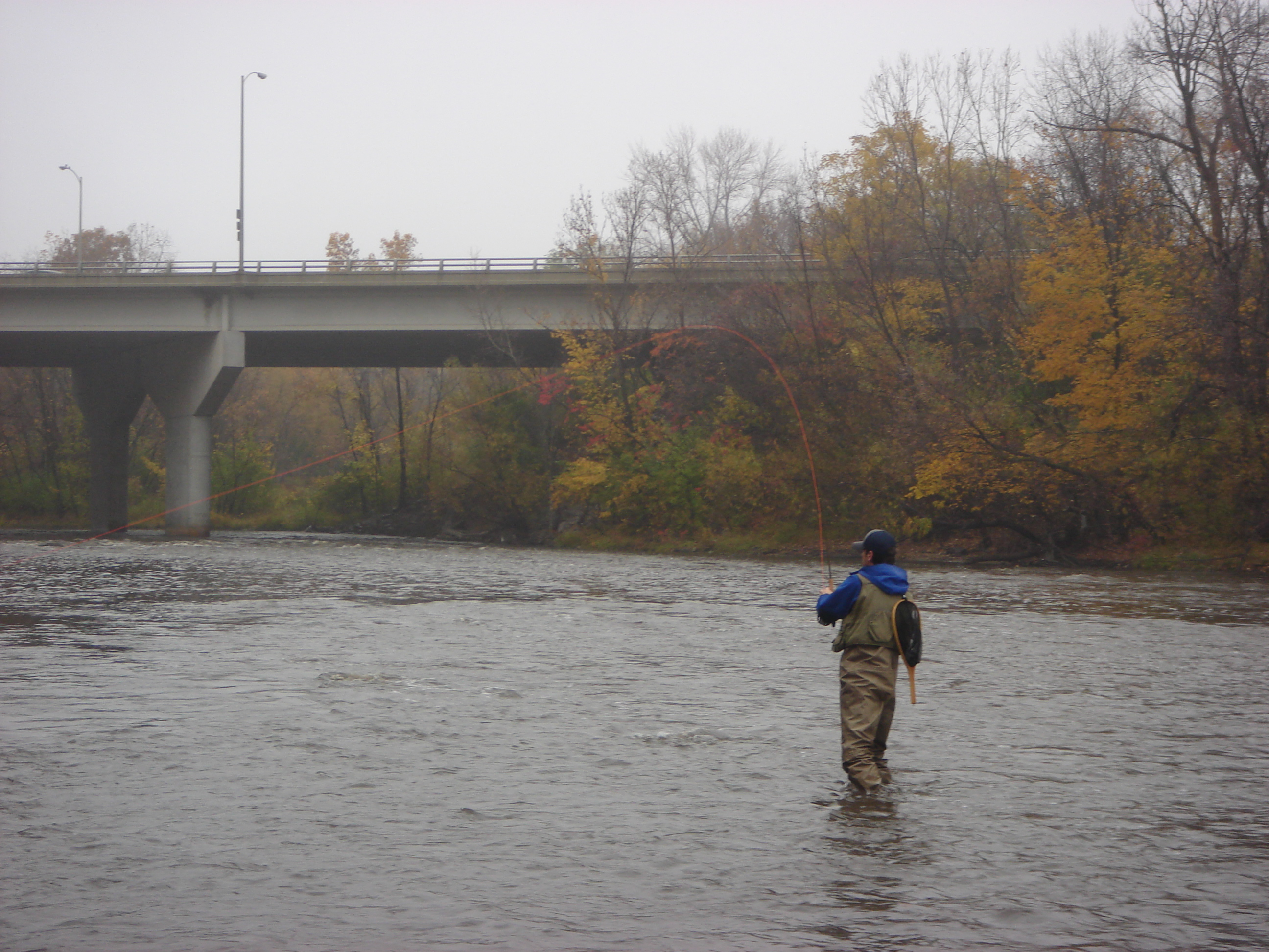 Flyfishing for salmon on the milwaukee river die for Milwaukee river fishing