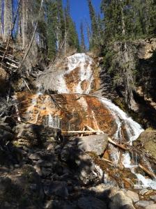 Skalkaho Falls.